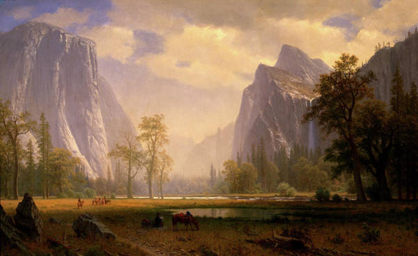 Looking Up The Yosemite Valley  Poster