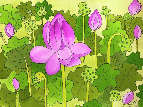 Lotus And Waterlilies Poster