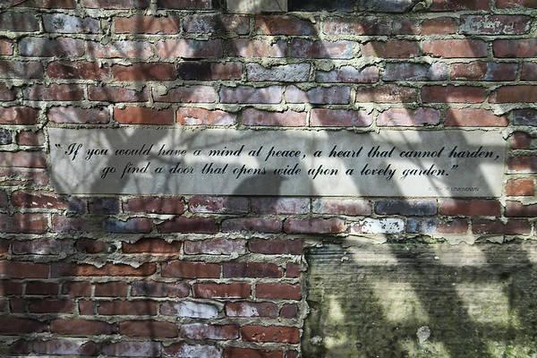 Lovely Garden Wall Poster