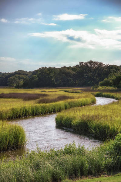 Lowcountry Creek Poster