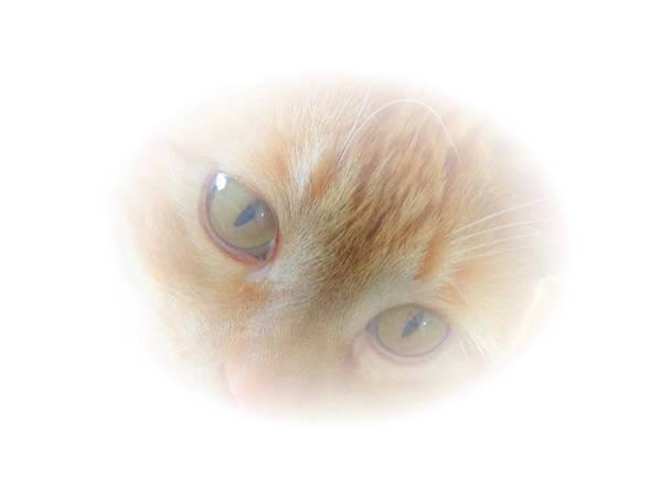 Magic Eyes Poster