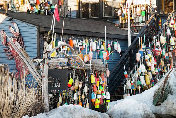 Maine Lobster Shack In Winter Poster