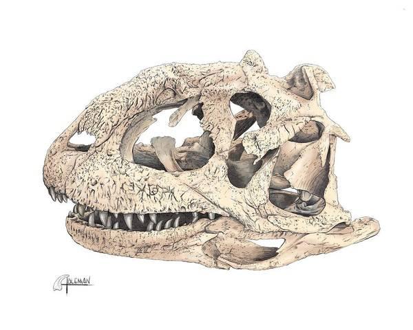 Majungasaur Skull Poster