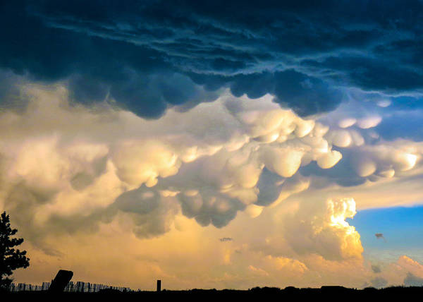 Mammatus Clouds At Sunset Poster