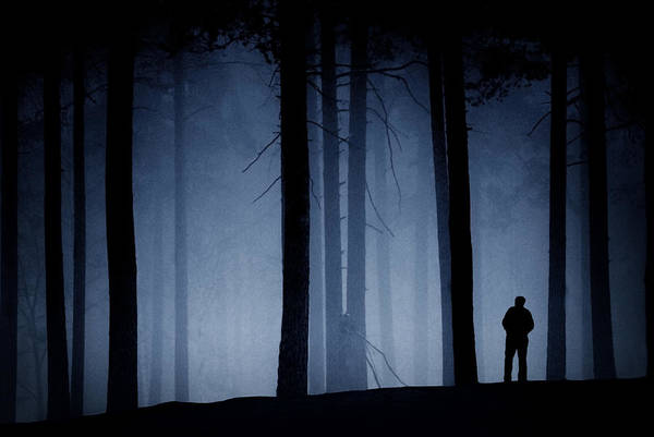 Man In Forest Poster