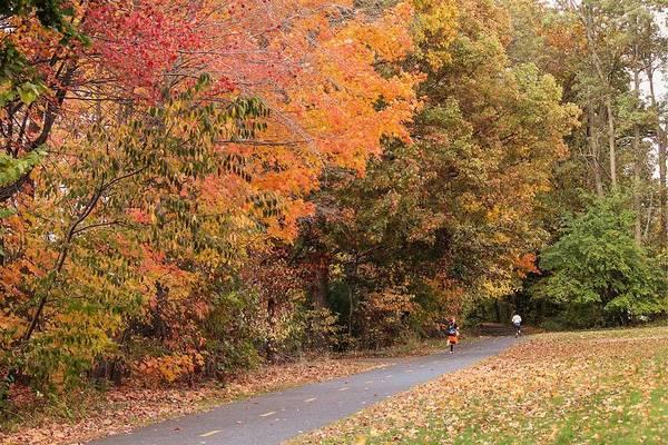 Manhan Rail Trail Fall Colors Poster