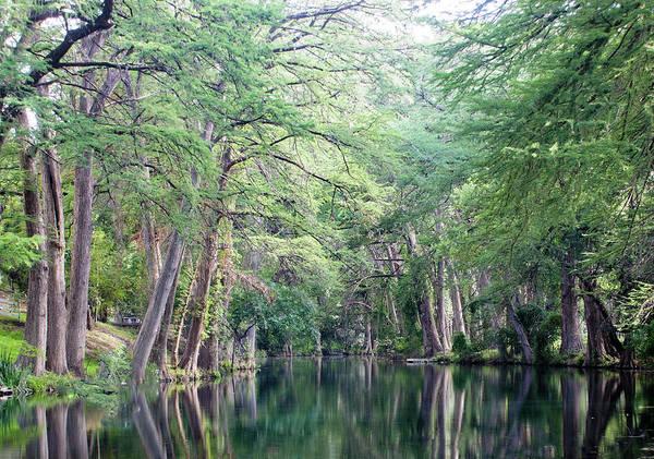 Medina Creek In Summer Poster
