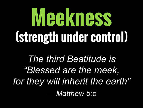 Meekness Poster
