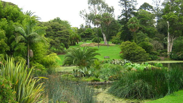 Melbourne Botanical Gardens Poster