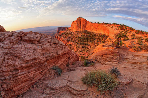 Mesa Arch Overlook At Dawn Poster