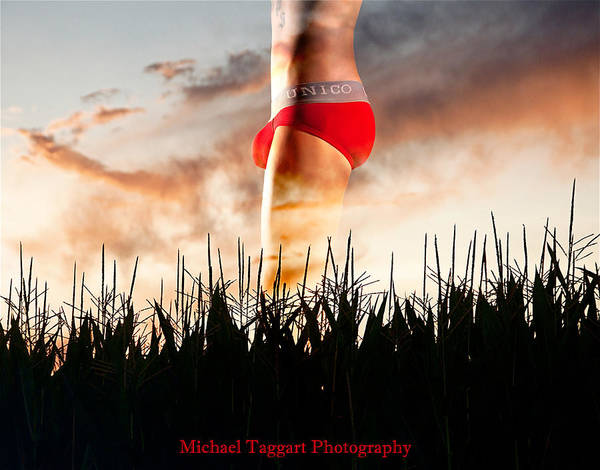 Michael Phelps Sunset Poster