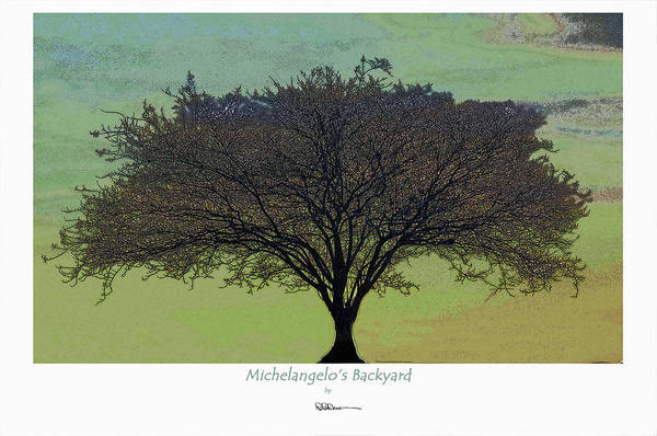Michelangelo's Backyard Poster