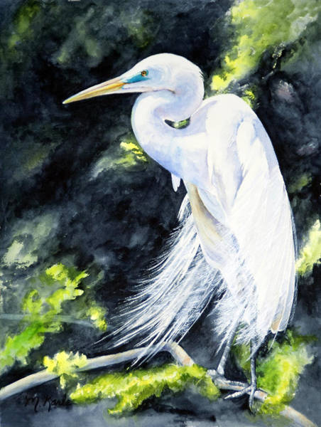 Miss April - Great Egret Poster
