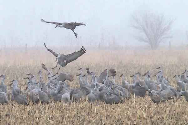 Misty Morning Nebraska Landing Poster
