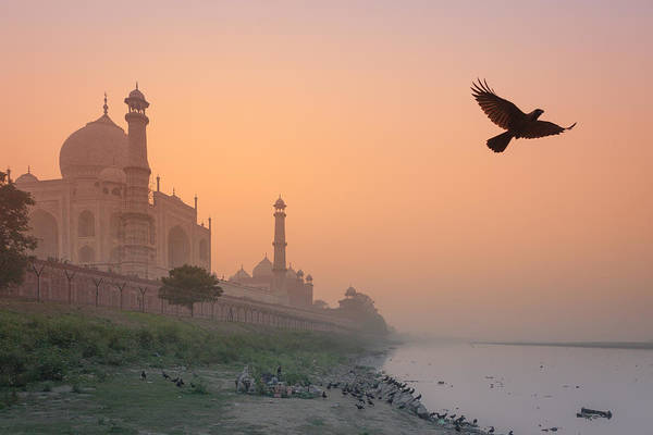 Misty Taj Mahal Poster