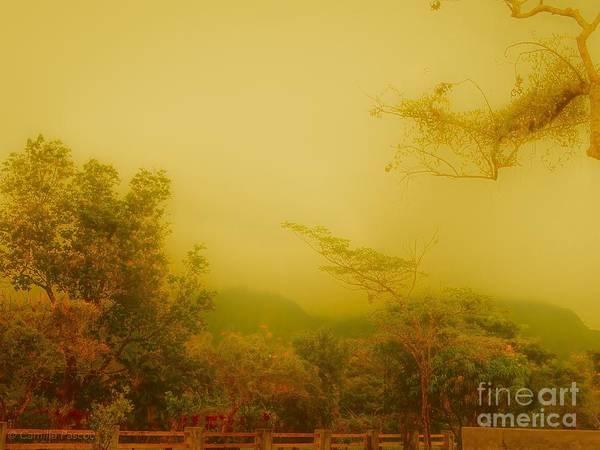 Misty Yellow Hue- El Valle De Anton Poster