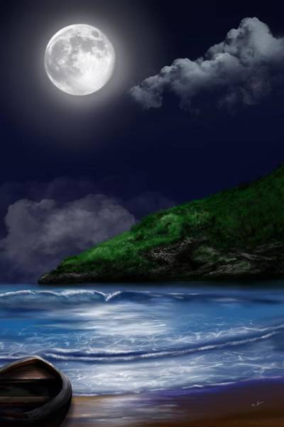 Moon Over The Cove Poster