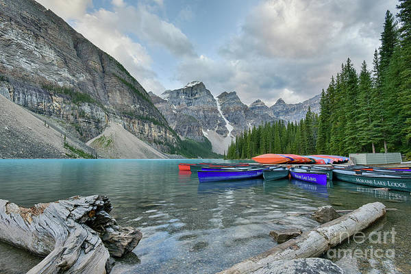Moraine Logs And Canoes Poster