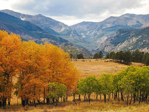 Moraine Park In Rocky Mountain National Park Poster