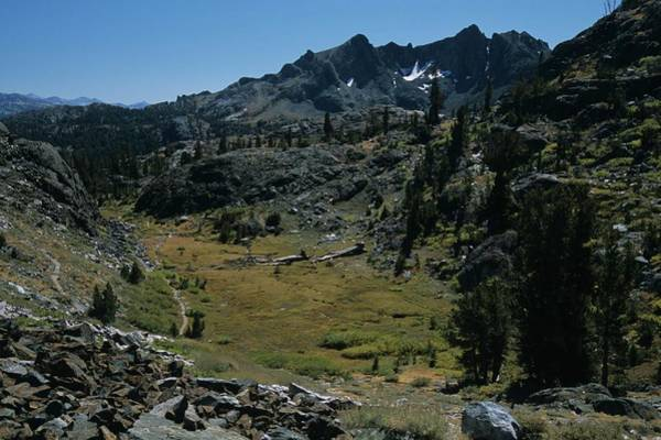 Mount Ritter And Meadow Poster