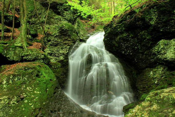 Mount Toby Roaring Falls Poster