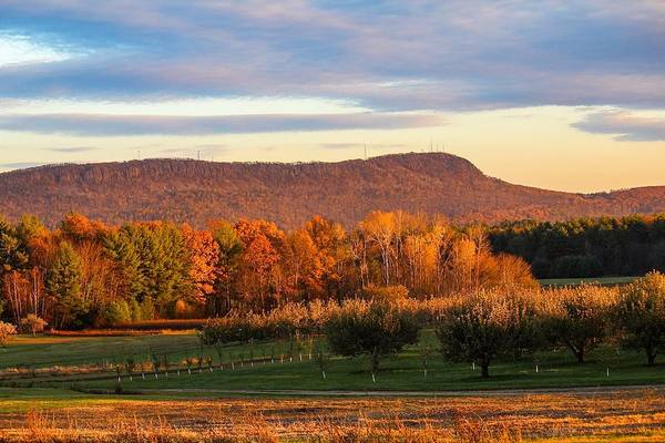 Mount Tom Foliage View Poster