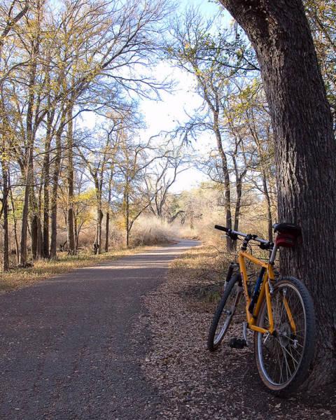 Mountain Bike Trail Poster