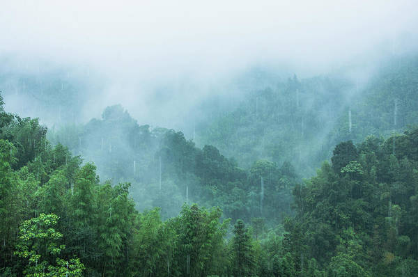Mountains Scenery In The Mist Poster