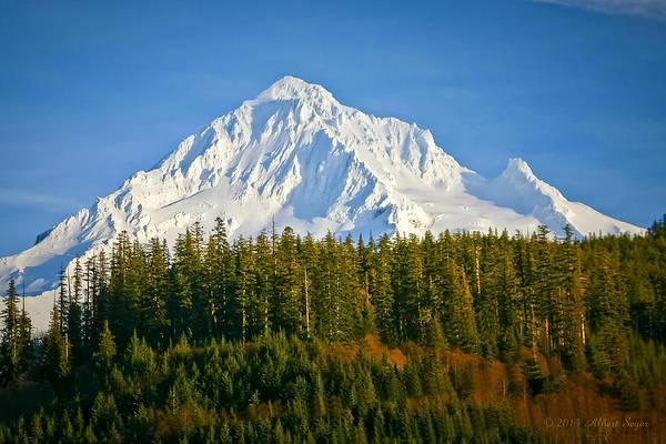 Mt Hood In Winter Poster