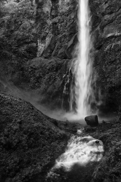 Multnomah Falls In Black And White Poster