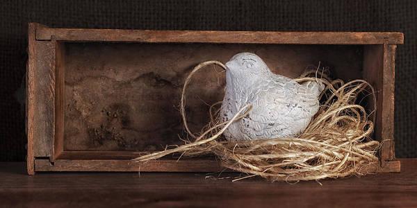 Nesting Bird Still Life II Poster