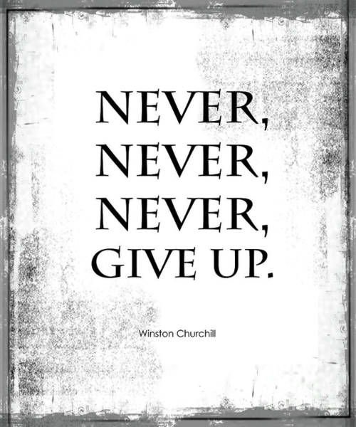 Poster featuring the photograph Never Never Never Give Up Quote by Kate McKenna
