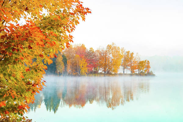 New England Fall Colors Of Maine Poster