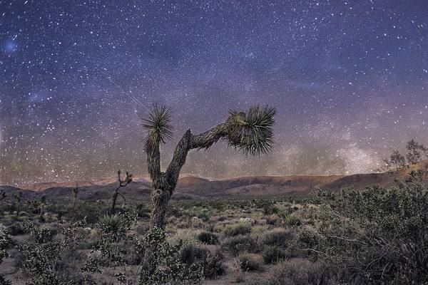 Poster featuring the photograph Night Sky by Alison Frank