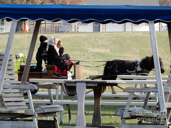 November Pony Cart Fun Poster