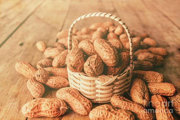 Nut Basket Case Poster
