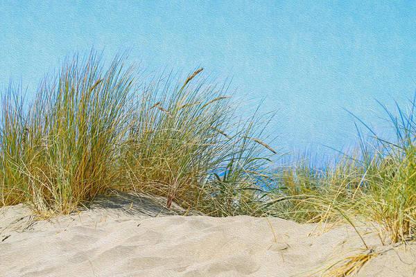 Ocean Beach Dunes Poster
