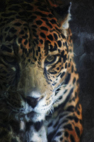 On The Prowl Poster