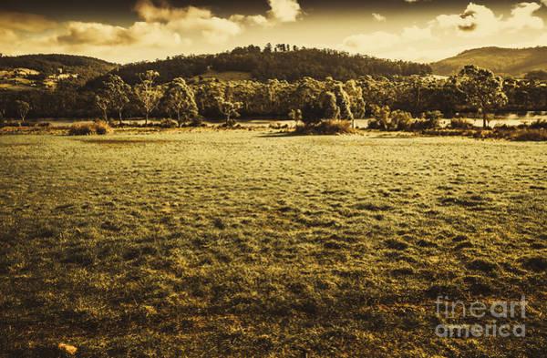 Open Fields Of Woodstock Tasmania Poster