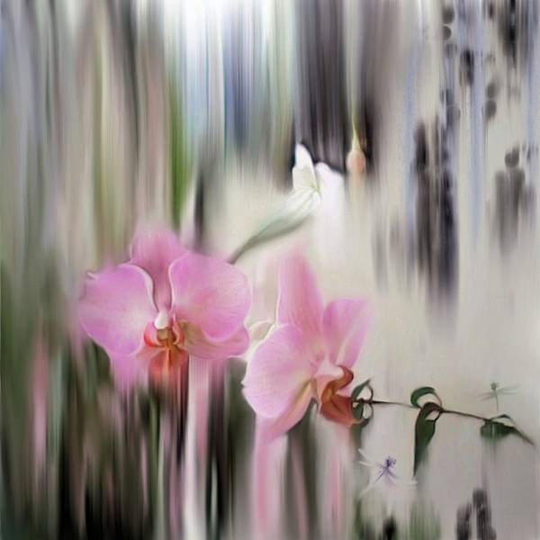 Orchids With Dragonflies Poster