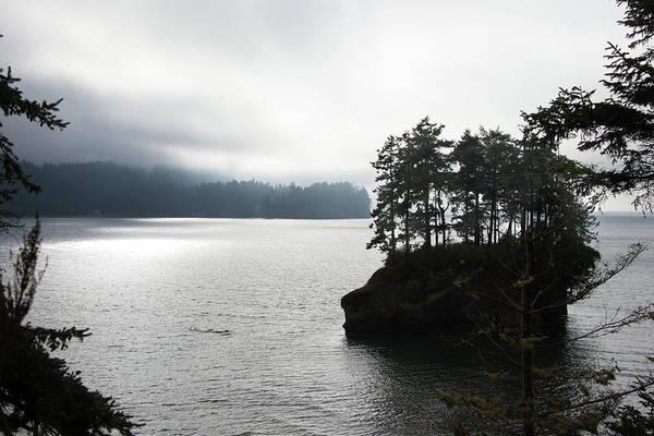 Oregon Coast Fog Poster