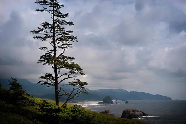 Oregon Ocean Vista Poster