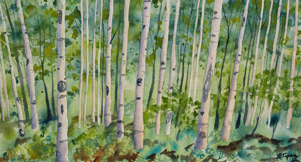 Original Watercolor - Summer Aspen Forest Poster