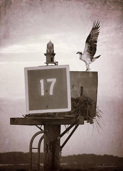 Osprey Landing On Channel Marker 17 Poster