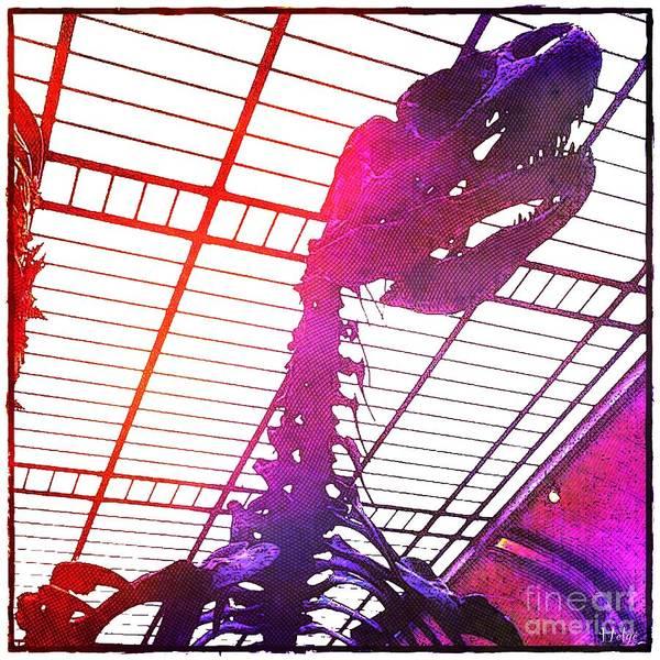 Paleo Rex Poster