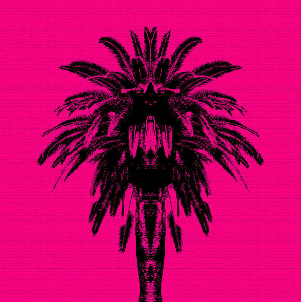 Palm Tree - Pink Sky Poster