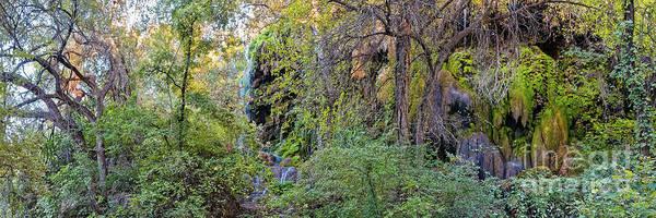 Panorama Of Gorman Falls At Colorado Bend State Park - Lampasas Texas Hill Country Poster