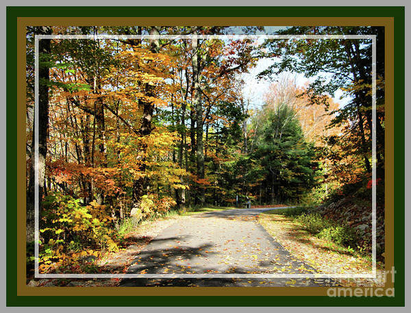 Paper Mill Trail, Framed Poster