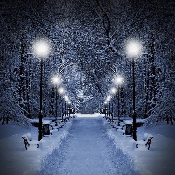 Park At Christmas Poster
