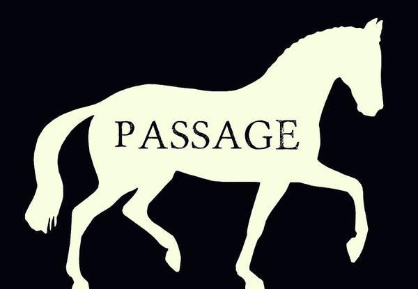 Passage Negative Poster